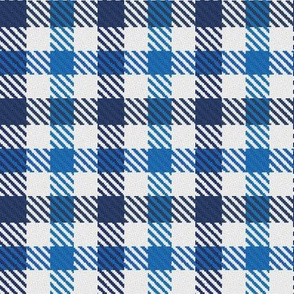 Two Color Gingham Navy and Royal Blue