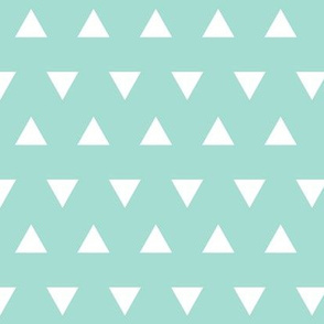 Triangles – Mint  + White Triangle Geometric Baby Kids