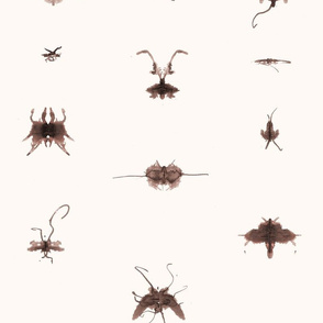 Bugs for Paper