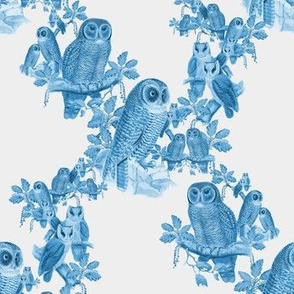owl pattern blue & white