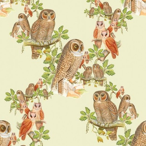 Old Fashioned Owl Pattern - painting