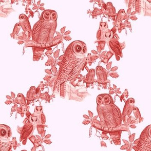 Owl Pattern - Red & White