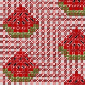 Watermelon Chickenscratch Gingham