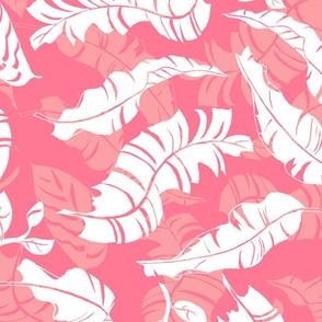 Mambo Pink Blush 150