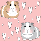 guinea-pigs-and-hearts on pink