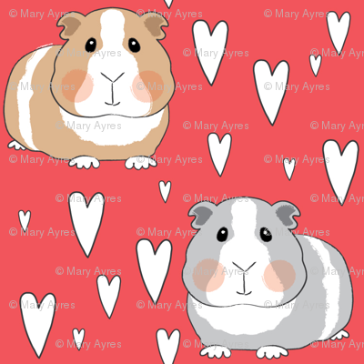 guinea-pigs-and-hearts-on-red