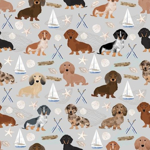 Doxie Coastal fabric - dogs at the coast, summer, sand dollar, beach design - grey