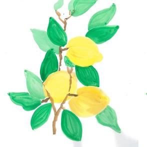 lemon bouq