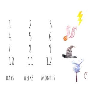 Wizards Symbols Baby Milestone Blanket