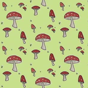 Light Green Toadstool Woodland Mushroom-ch-ch