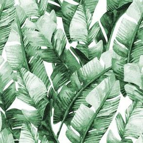 "8"" Tropical Banana Leaves // Green"