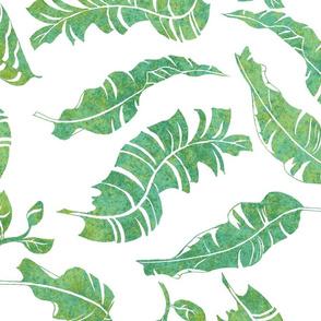 Mambo Patina Green on White 150