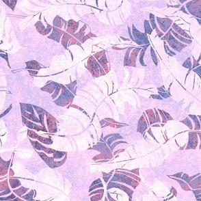 Mambo Lilac 150
