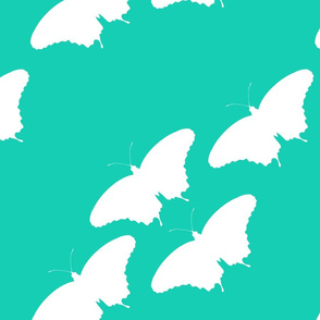 butterfly cluster teal