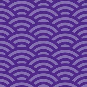 royal purple scallop