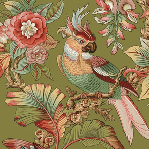 Edwardian Parrot ~ Dogwood Dream on Thomas