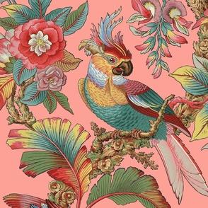 Edwardian Parrot ~ Duchess