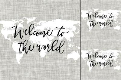 1 blanket + 2 loveys: Welcome To The World Linen Pantone 169-1