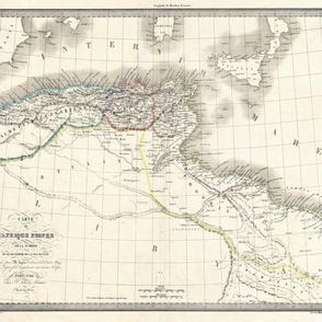 """1842 Map of Barbary Coast (21""""W)"""