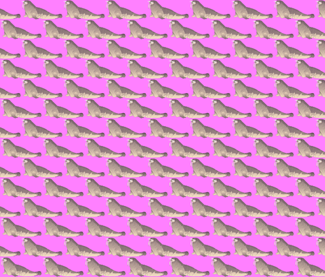 Walrus in pink fabric by combatfish on Spoonflower - custom fabric