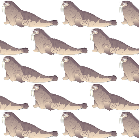 Walrus on white fabric by combatfish on Spoonflower - custom fabric