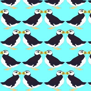 Puffin Pair in Blue