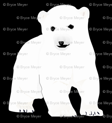 Polar Bear  Cub on Black