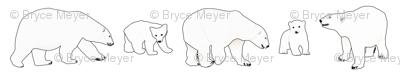 Line of Polar bears
