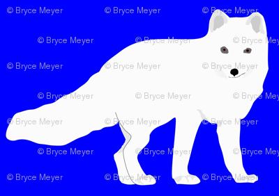 Arctic Fox in Blue