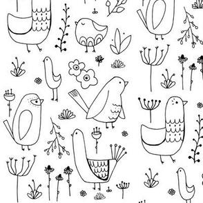 Modern Birds and Plants