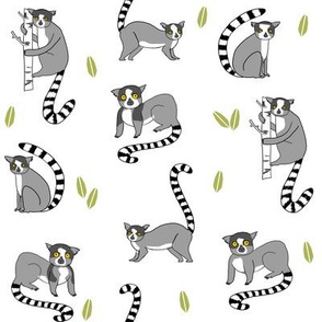 lemur // animal nature jungle lemurs fabric black and white