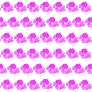 Lilac roses on white background
