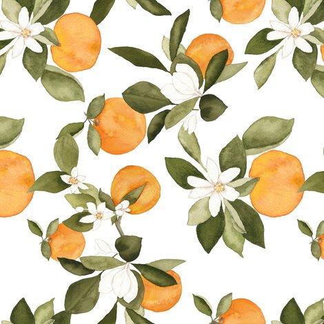 Roranges-blossom-2_shop_preview