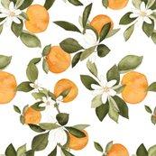 Roranges-blossom-2_shop_thumb