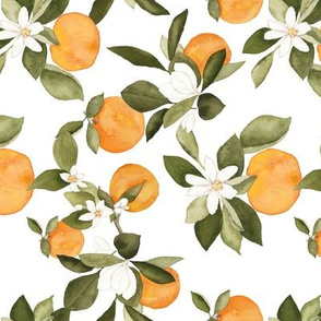 Orange Blossom 2