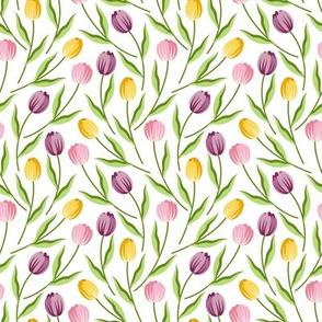 CY. Tulips