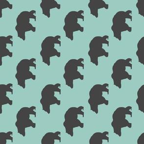 PW bears