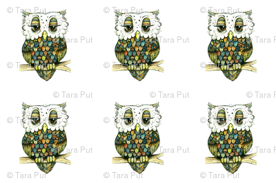 Re-sized Owls