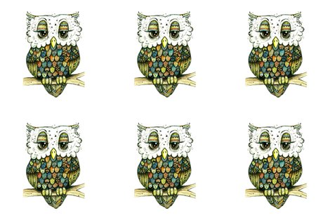 Rsix_owls_shop_preview