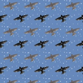 metbird stripe