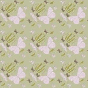 Lepidoptera Plant
