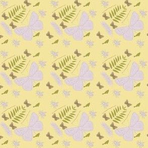 Lepidoptera Sun