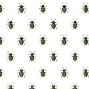 Elegant beetle brooch