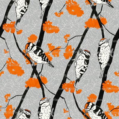 Woodpeckers with Orange Berries - 36cm repeat
