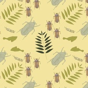 Lepidoptera Beetle print Sun