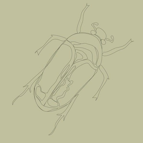 Lepidoptera Plant Large Beetle Monochromatic 12inch