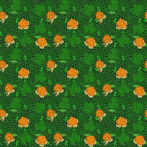 Cloudberry moss 2