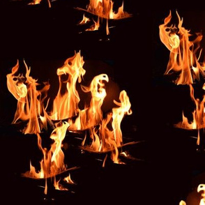Genuine Fire Dragons