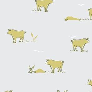 Buffalo in yellow and grey