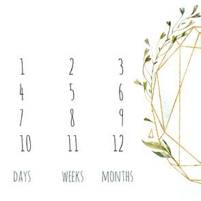 Crystal Geometric Leaves Oval Baby Milestone
